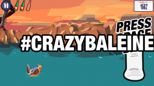 Crazy B is a crazy whale in the sea